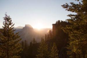 Idaho Falls ISA Certified Arborist