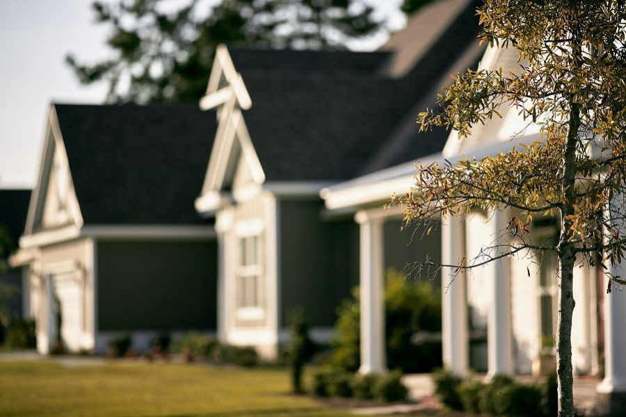 How a Certified Arborist Can Help Keep Your Landscape Beautiful