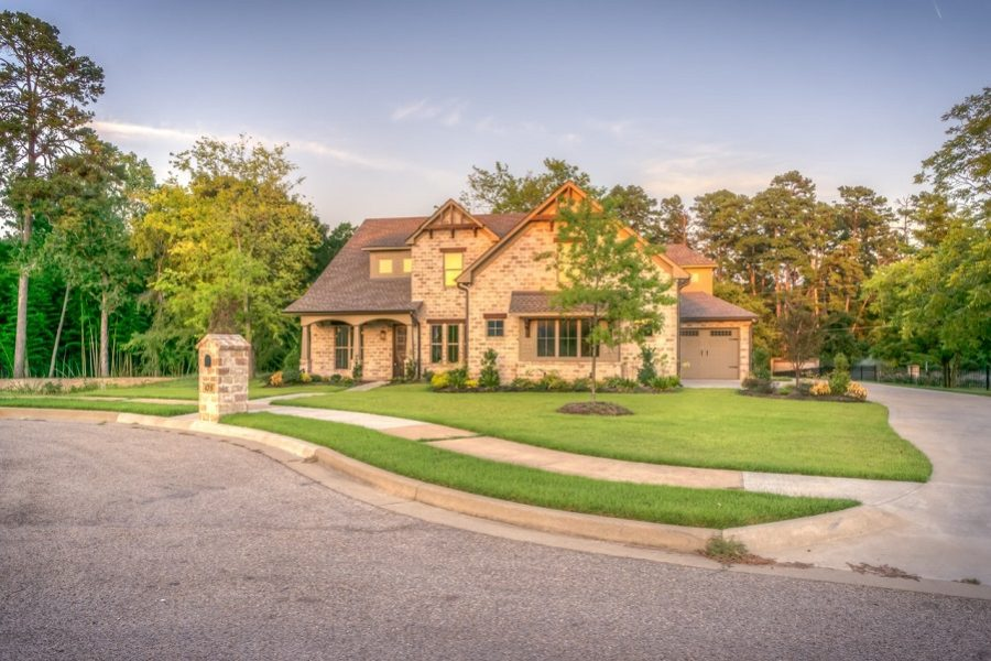Increase Property Value With Salt Lake City Tree Care